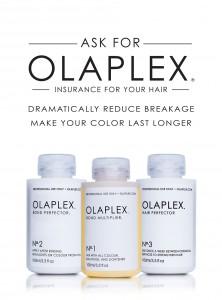 Olaplex 16